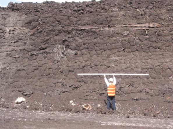 Figura 6. Parte superior del yacimiento de lignito de Yallourn, en la que se observan restos de árboles.