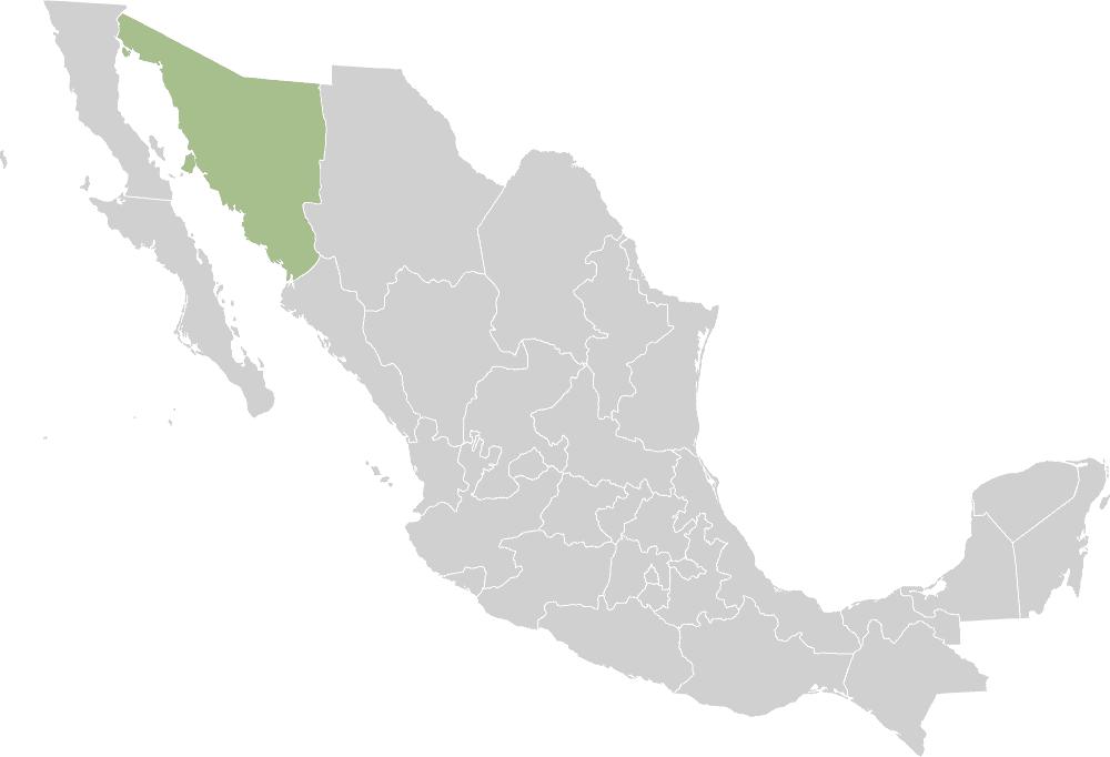 Estado de Sonora en México