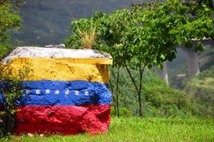 Roca con dibujo de la bandera de Venezuela
