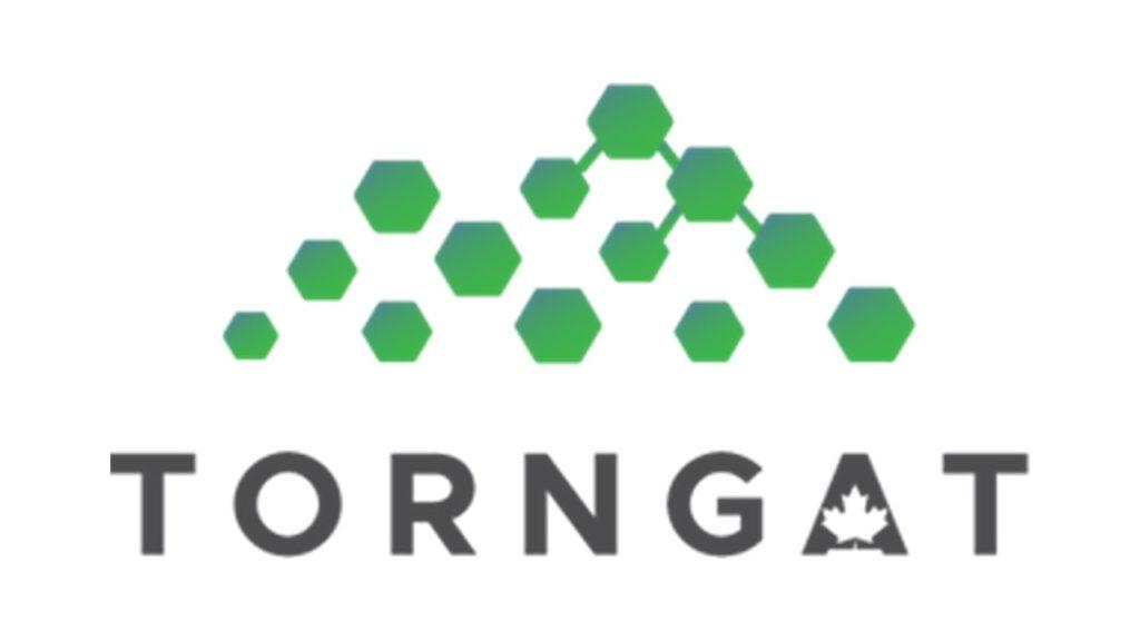 Torngat Metals Ltd_logo